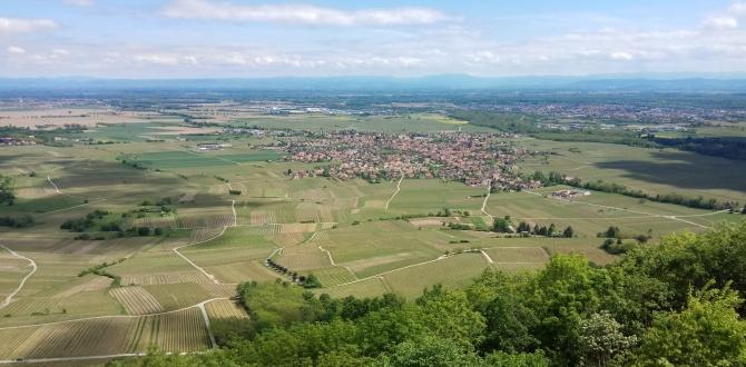 Belles balades en Alsace !