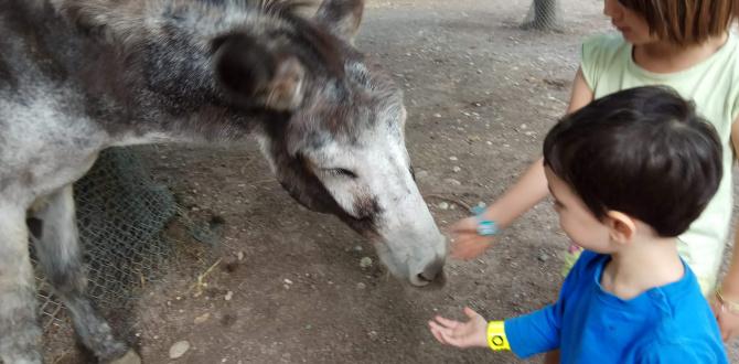 Voir des animaux en Alsace