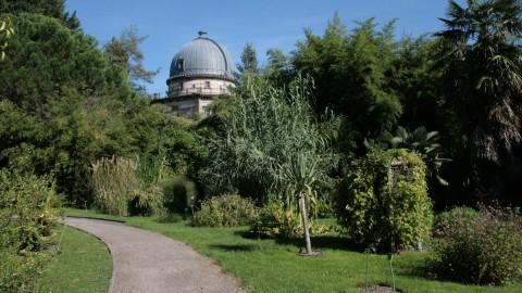 Jardin botanique de strasbourg mus e vivant au c ur de la ville 67 alsace des petits - Jardin botanique de strasbourg ...