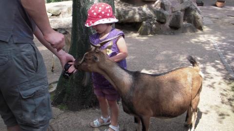 Zoo de Saarbrücken