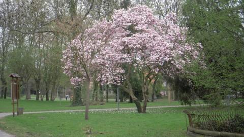 Parc de la Villa Gruber