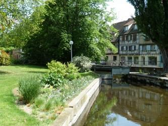 Musée d'Histoire Naturelle de Colmar