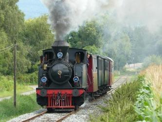 Train Thur Doller