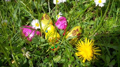 Chasses aux œufs de Pâques