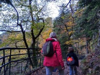 Cascade et ruines du Nideck