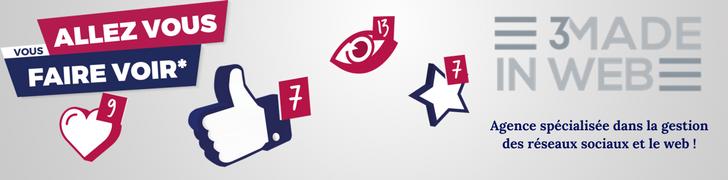 3made in web - agence spécialisée dans la gestion des réseaux sociaux et le web